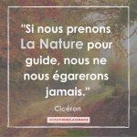 """Citation n°10 - Si nous prenons la nature pour guide, nous ne nous égarerons jamais"""""""
