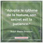 """Adopte le rythme de la Nature, son secret est la patience"""". Ralph Waldo Emerson"""