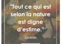 """""""Tout ce qui est selon la Nature est digne d'estime."""" – Cicéron #15"""