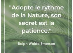 """""""Adopte le rythme de la Nature, son secret est la patience."""" – Ralph Waldo Emerson #19"""