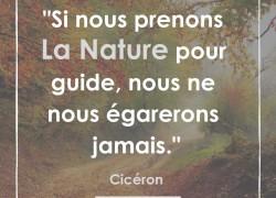 """""""Si nous prenons la nature pour guide, nous ne nous égarerons jamais"""" – Cicéron #10"""
