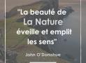 """""""La beauté de la nature éveille et emplit les sens"""" – John O'Donohue #11"""