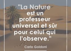 """""""La nature est un professeur universel et sûr pour celui qui l'observe"""" – Carlo Goldoni #9"""